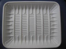 Biodegradable disposable fast food tray