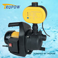 With Electronic Switch Clearn Water Pump for Garden