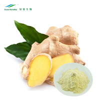 Medical Grade Ginger Root Extract/Ginger Root P.E. Health Benefits Powdered Ginger