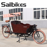 2 Wheel Cargo Delivery Bike Cargo