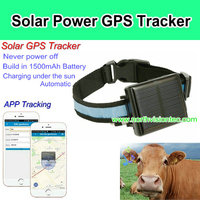 Solar powered cow gps tracker with app tracking and IP66 waterproof function