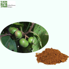 High Quality Natural Pygeum Africanum Bark Extract Price