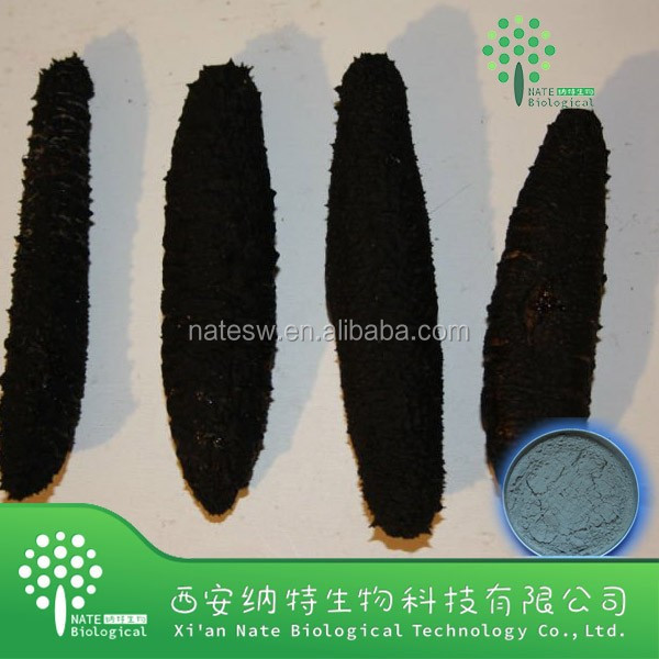100% Natural Excellent quality pure sea cucumber powder extract Holothurians powder