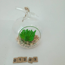 New style clear glass jar for flower terrarium With Promotional Price