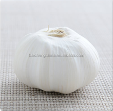 black garlic for sale and bulk garlic factory provides good products