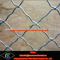 Galvanized steel wire security beauty grid