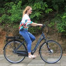 EEC Approved Popular electric bicycle with front motor