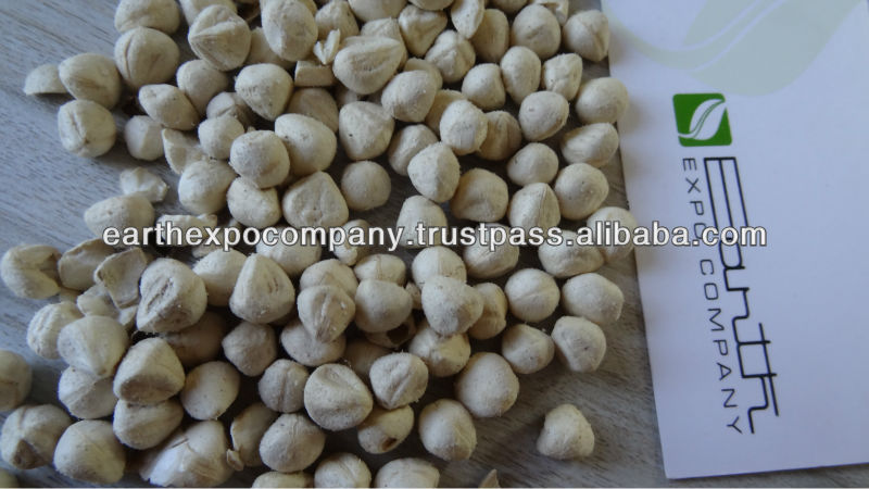 Drumstick seeds for cultivation