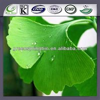 China manufacturer wholesale ginkgo biloba,ginkgo biloba 60mg,ginkgo biloba vitamins with wholesale price and quality service