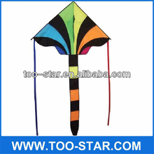 Rainbow Cheap Nylon Triangle Kite,Promotional Kite