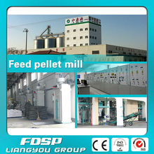 Agro Processing Equipment Poultry Feed Making Machine Swine Feed Pellet Engineering