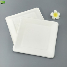Disposable 8 x 8 inch square sugarcane bagasse plates for restaurant
