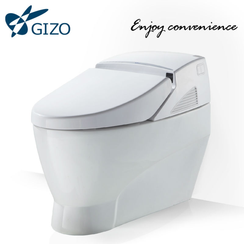 Floor mounted one piece latrine