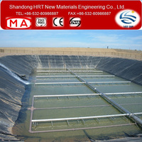 Dam Water proofing Liner HDPE Geomembrane Price