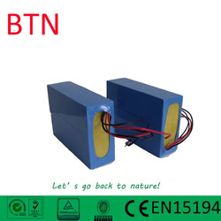 electric vehicle battery 36v 10ah