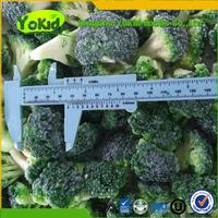 Export Standard Bulk Frozen Fruit And Vegetables IQF Broccoli