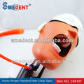 Hot Sale! Dental Teaching Simulator Senior Simple Dental Phantom head