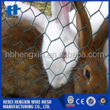 PVC Coated rabbit cage wire / pvc coated hexagonal wire mesh