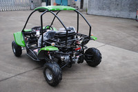 110cc adults/kids CE dune buggy for sale