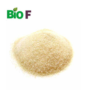 Top Quality  Halal Edible Fish Scale Gelatin Powder For Food and Beverage