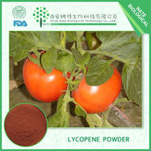 Manufacturer supply natural Tomato extract 98% Lycopene price and tomato extract