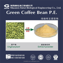 25% 50% Coffee Bean Extract Chlorogenic acid