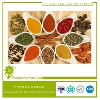 HALAL Spicy Powder flavor, concentrate powder flavour for food for meat process ,12 years professional flavor manufacturer