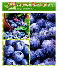 bilberry plants for sale.natural extracts Cranberry Extract 5%, 15%, 25%, 30%, 50% Proanthocyanidins/Anthocyanins