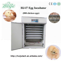 320 goose eggs incubator HJ-I7 on sale in China