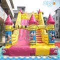 Low Price Super Inflatable Double Dry Slide with Ladder for Amusement