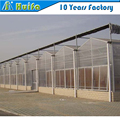 Multi span polycarbonate sheet,PC Sheet Cover Material garden greenhouse