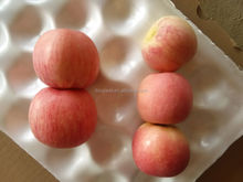 Fresh apple fuji with good delicious for sale