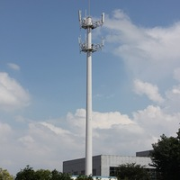 Attractive and durable hot sale telecom antenna tree gsm plant tower