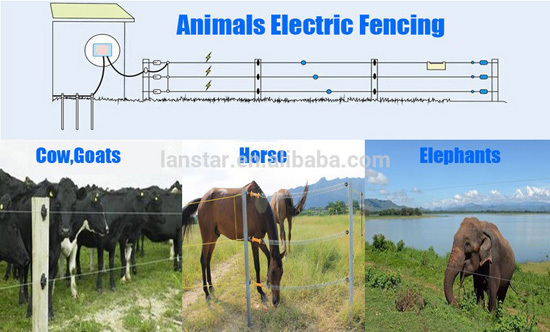 Hot Sale Wholesale Solar Panels Portable 300W Pet Animal Electric Fence Energizer Horse Farm