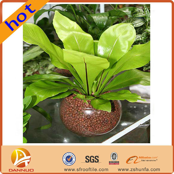 Convenient Benefits environmental protection peat soil