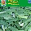 /product-detail/f-quality-chinese-green-onion-60430589934.html