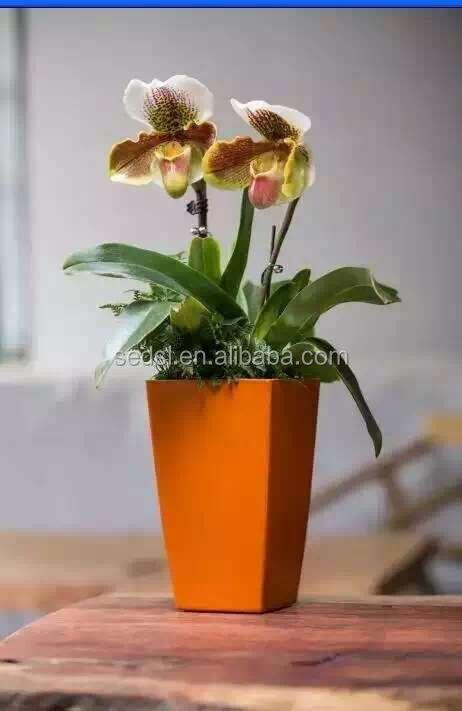 Indoor Square Planter Flower Pots Decoration Vase Garden
