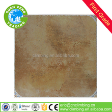 500*500mm lappato finish cotto villa floor tile