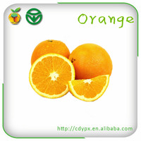 Fresh Oranges Fruits and Vegetables