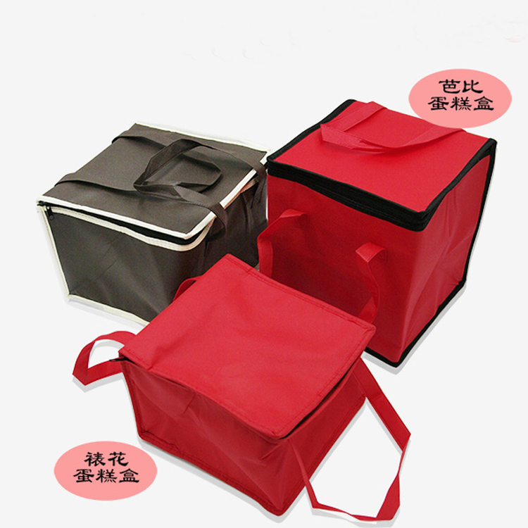 Insulated Cooler Bag Lunch Box Freezable Picnic Bag for Boy Girl