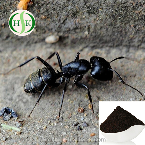 Natural Black Ant Extract Black Ant Sex Pills