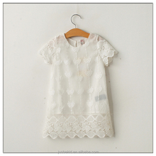 Lace Embroidery Childrens Dress Baby Short Sleeve Kids Casual Dresses