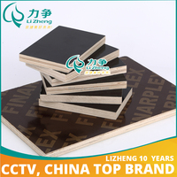 Manufacturer construction birch plywood