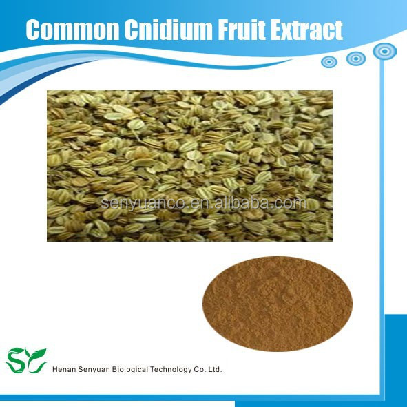 Natural Common Cnidium Fruit Extract Osthole