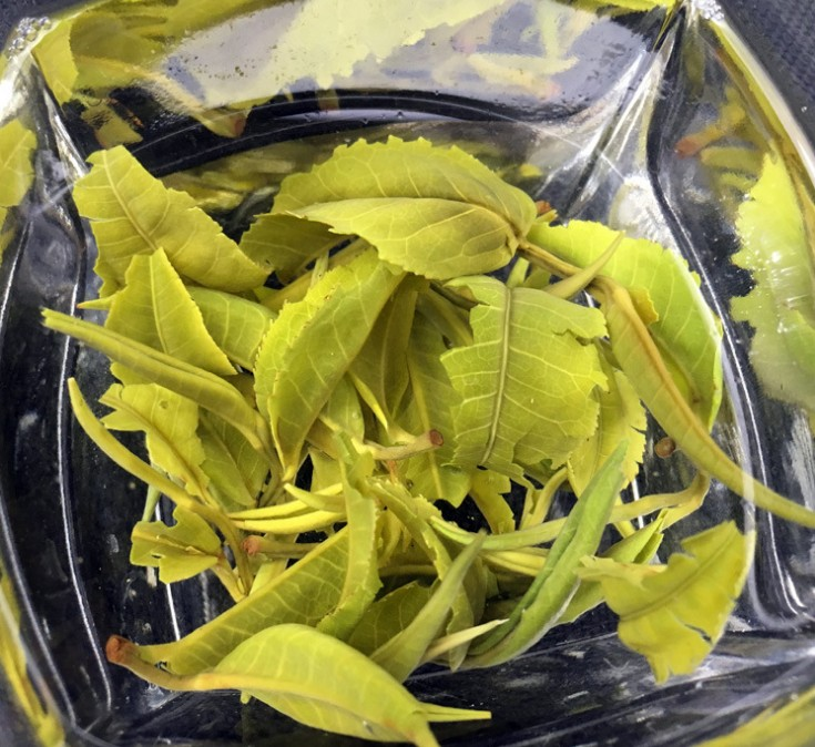 Mao Feng Lose Leaves OEM Jasmine Green Tea For Wholesale