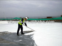 Waterproofing Roof Coating