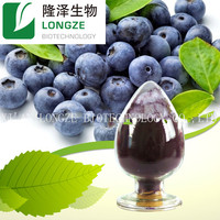 ISO and KOSHER Certified Manufactory supply European Bilberry P.E/European Bilberry Extract