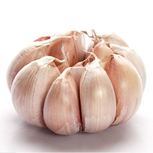 2017 chinese fresh garlic price
