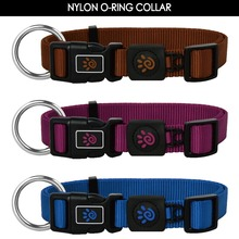 Eco-friendly Durable Pet Collar with Plastic Buckle for Training