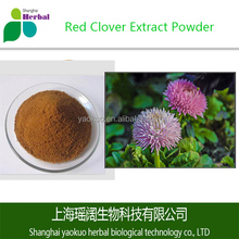 Pure and Best Red Clover Extract Powder